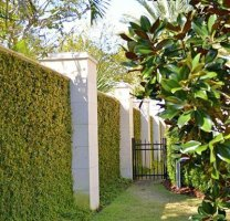 Sarasota Landscape Design And Maintenance