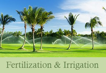 Landscape Fertilization