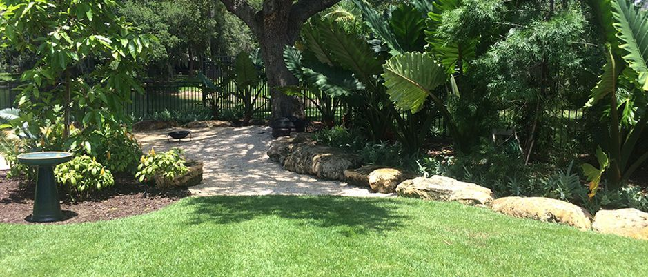 Sarasota landscaping maintenance
